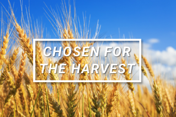 Traditional Worship | Chosen for the Harvest