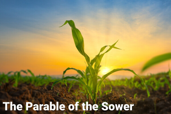 Traditional Worship | The Parable of the Sower